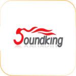 Loa hội trường SOUNDKING AUDIO